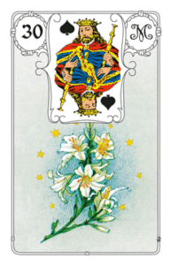 Karte Lilie im Lenormand